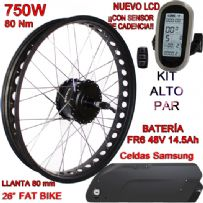 KIT FAT BIKE 750W BAFANG CST LCD6 48V 14Ah